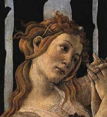 Sandro botticelli primavera essays